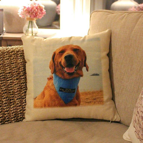 Slickers ◊ Doghouse Personalised Product Dog Print Cushion Cover