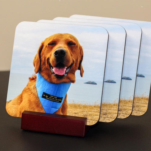 Slickers ◊ Doghouse Personalised Product Dog Print Drink Coasters