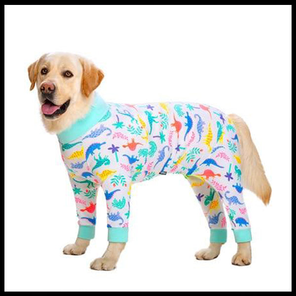 Big Dog Pattern PJ's