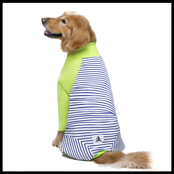 Big Dog Striped PJ's