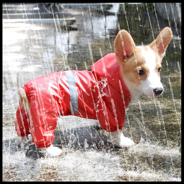 Dog Rain Coat Romper
