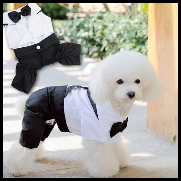 Dog Suit Romper