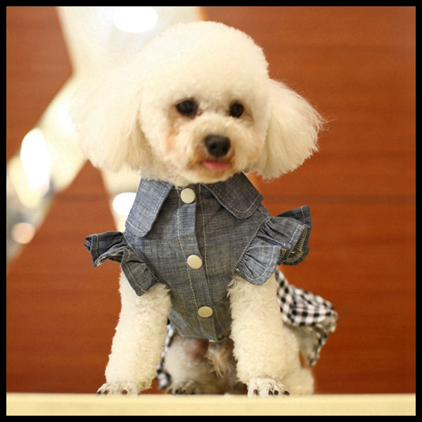 Frilly Country Dog Dress