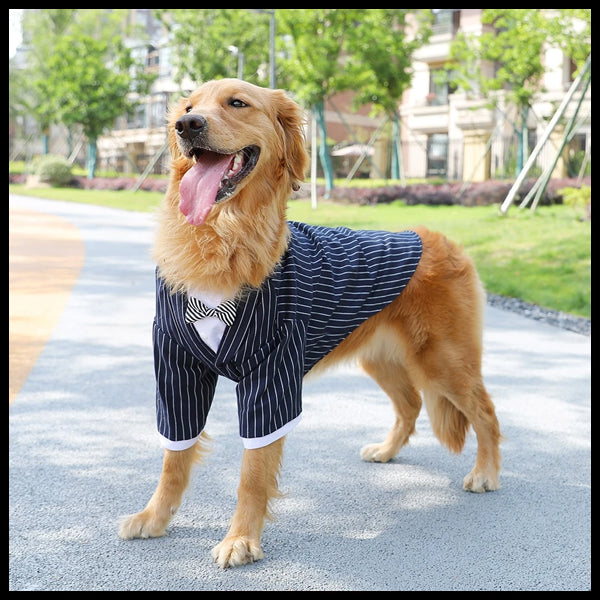 Pin Stripe Formal Dog Tuxedo