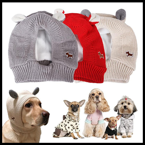 Snuggly Dog Beanie Hat