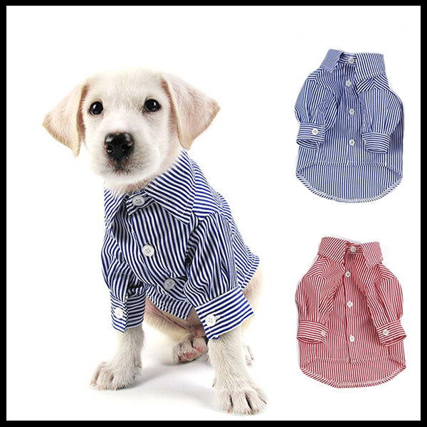 Stylish, Striped Dog Shirt