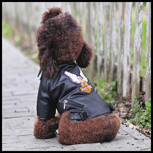 Eagle Biker Dog Jacket
