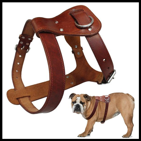 Genuine Brown Leather Harness