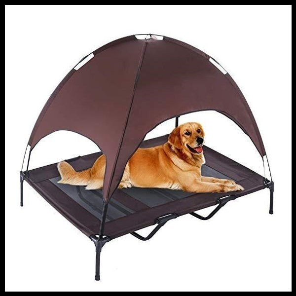 Elevated Bed with Tent
