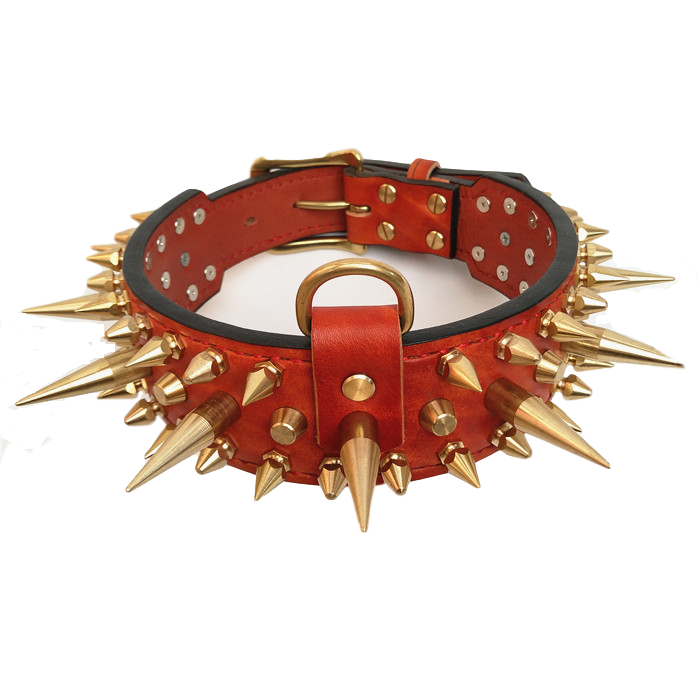 Golden Spikes Genuine Brown Leather Dog Collar - Holy Buyble