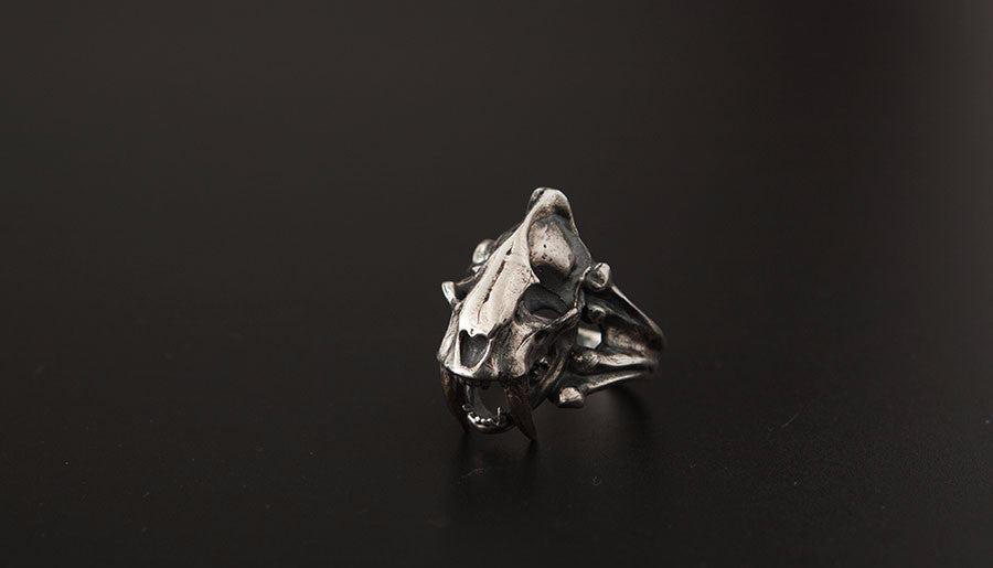 Saber Tooth Skull Ring - Holy Buyble