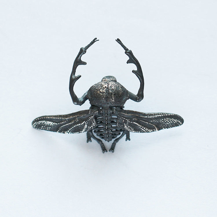 Long-armed Scarab Beetle Brooch - Holy Buyble