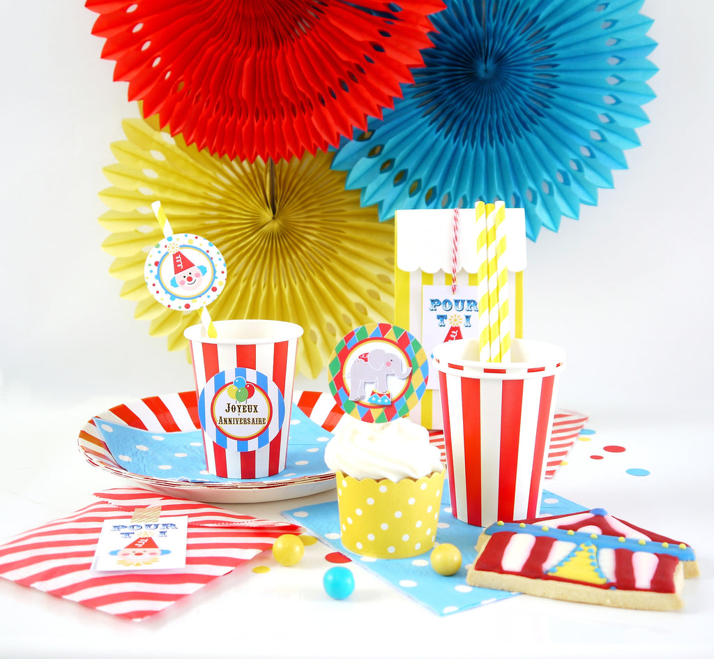 Party box coffret d co kit f te anniversaire cirque bird 39 s party - Decoration theme cirque ...