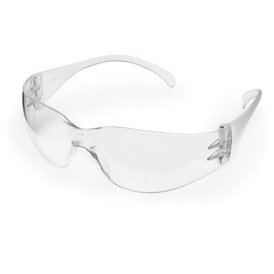 Intruder Economy Safety Glasses - Standard