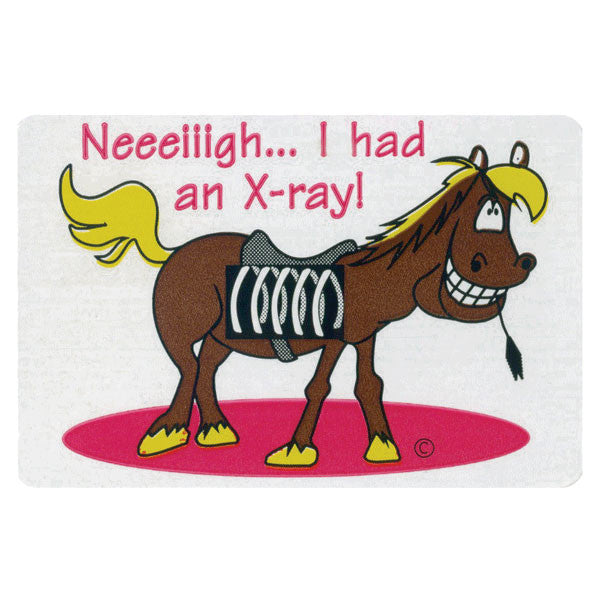X-Ray Horse Pediatric Stickers