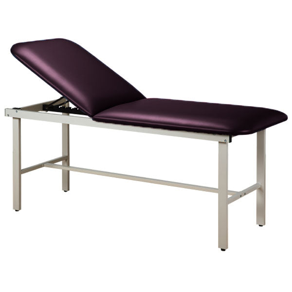 Adjustable Backrest Treatment Table with Steel Frame - Purplegray