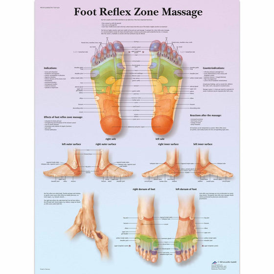 Foot Reflex Zone Massage Chart