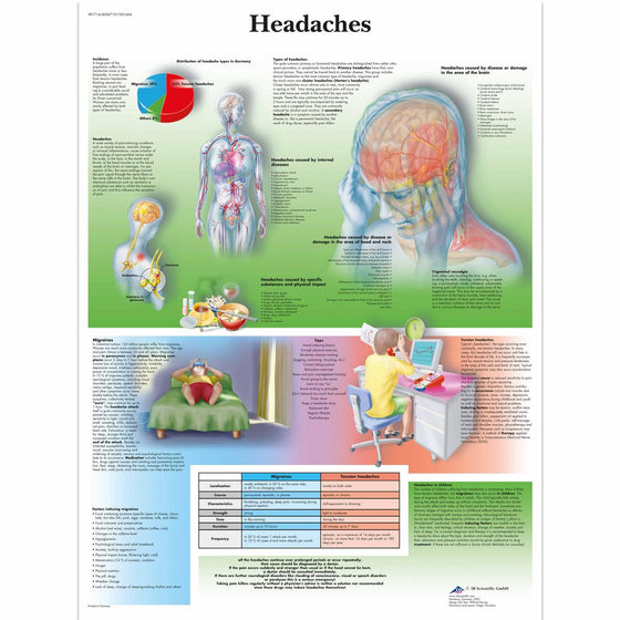 Headaches Anatomical Chart