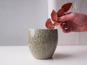 Load image into Gallery viewer, Vase by Shuji Haneishi