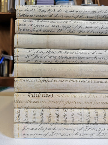 vellum spines on books