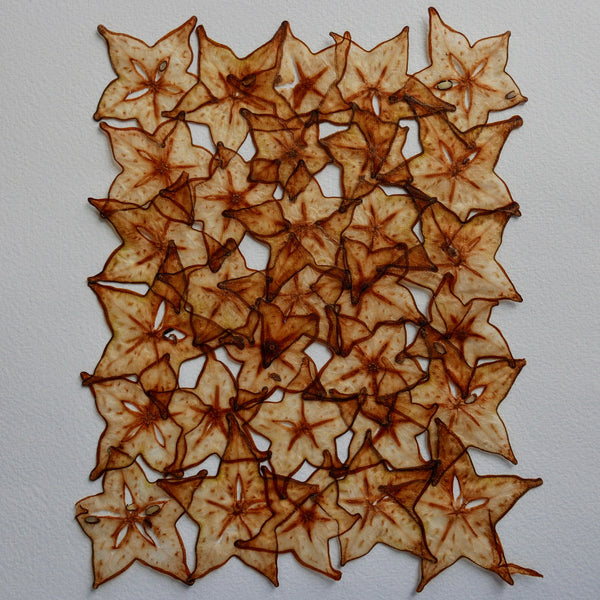 Star Fruit Handmade Paper Papyrus