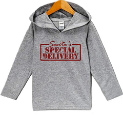 7 ate 9 Apparel Baby's Special Delivery Christmas Hoodie