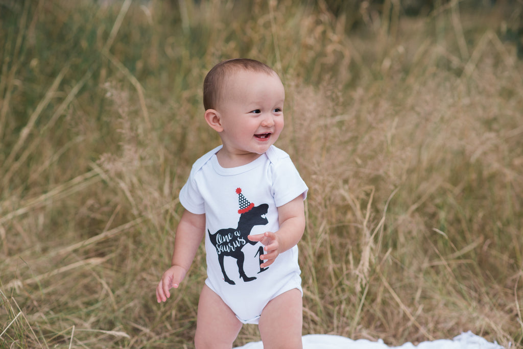 Dinosaur Birthday Shirt - Oneasaurus Boys Dino Bodysuit or T-shirt - Dinosaur One Birthday Party Outfit - Funny Dino Party Hat Birthday Top