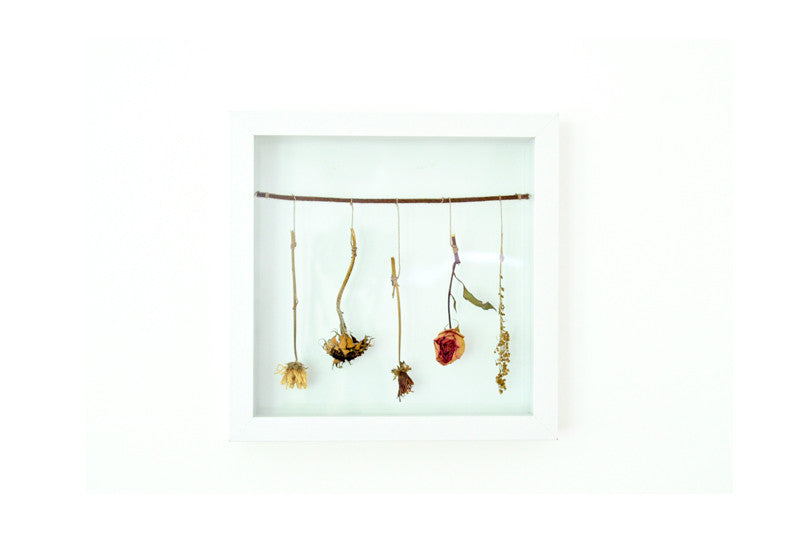 Flower Frame, Dried Flower