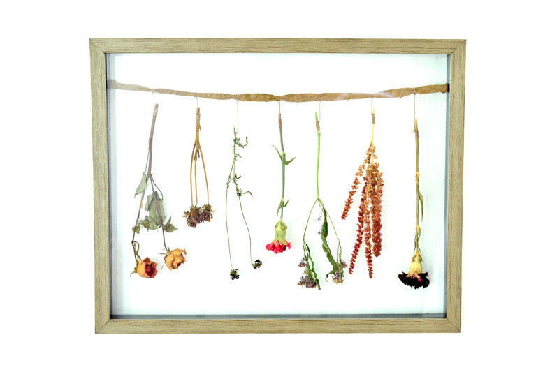 Flower Frame 2: Dried Flowers – Expressed Impressions
