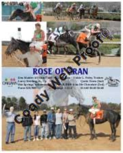 Rose Of Aran  -    -  2 8 2009