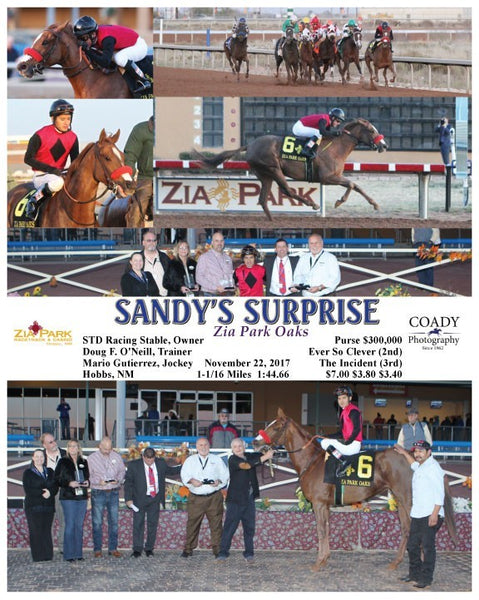 SANDY'S SURPRISE - 112217 - Race 10 - ZIA
