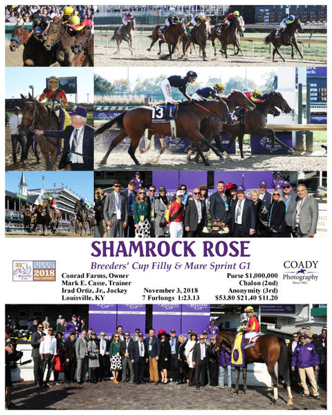 SHAMROCK ROSE - 110318 - Race 03 - CD