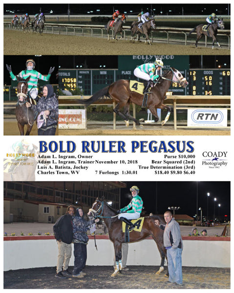 BOLD RULER PEGASUS - 111018 - Race 08 - CT
