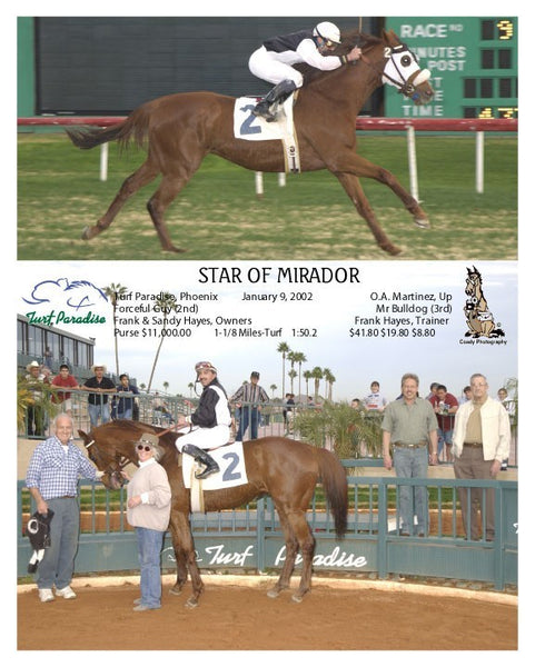 star of mirador -  - 1 9 2002
