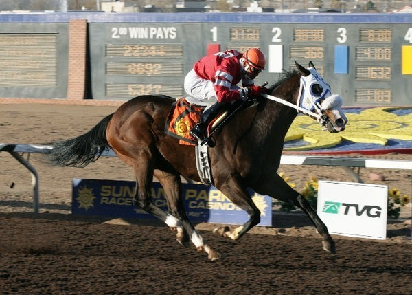 Daddy O. - The New Mexico State University Stakes
