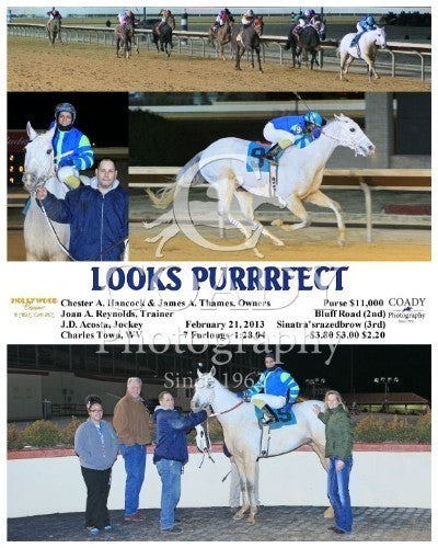 Looks Purrrfect - 022113 - Race 06 - CT