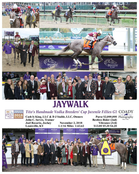 JAYWALK - 110218 - Race 07 - CD