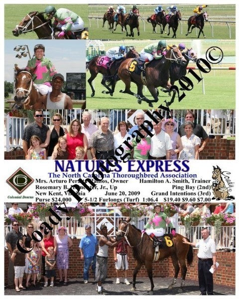 NATURES EXPRESS  -  The North Carolina Thoroughbre