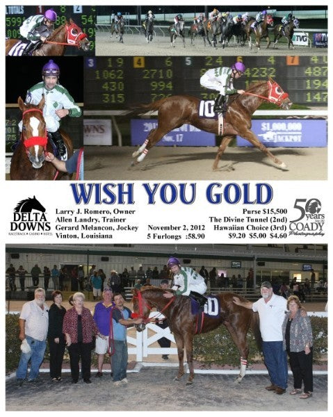 WISH YOU GOLD - 110212 - Race 07 - DED