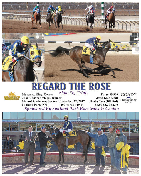 REGARD THE ROSE - 122217 - Race 03 - SUN