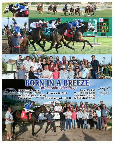 BORN IN A BREEZE - 021018 - Race 08 - TUP