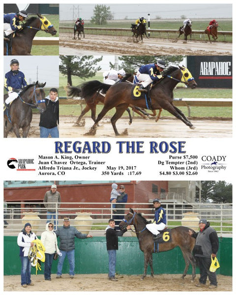 REGARD THE ROSE - 051917 - Race 03 - ARP