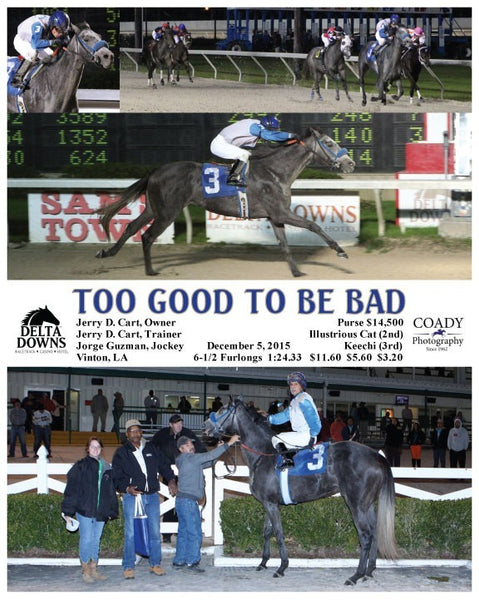 TOO GOOD TO BE BAD - 120515 - Race 03 - DED