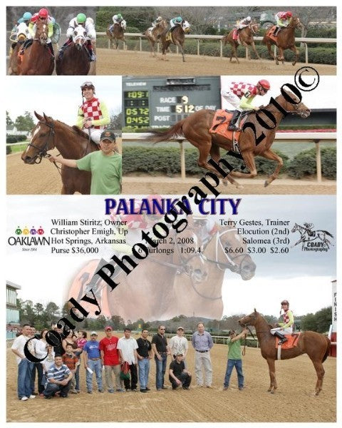 PALANKA CITY  -  The Prima Donna Stakes  15th Runn