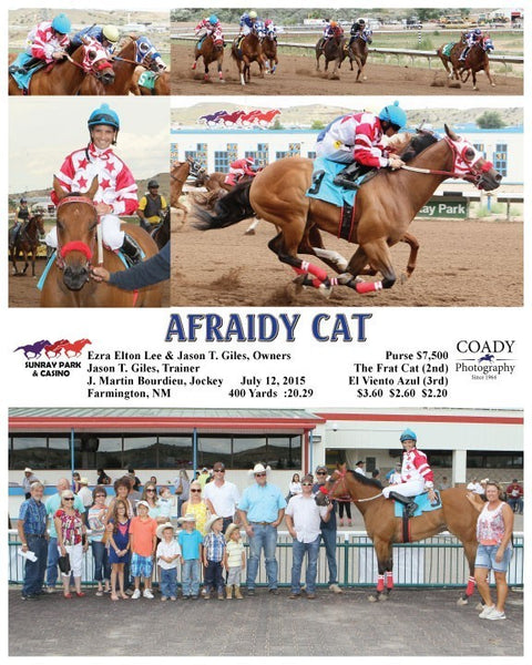 Afraidy Cat - 071215 - Race 01 - SRP