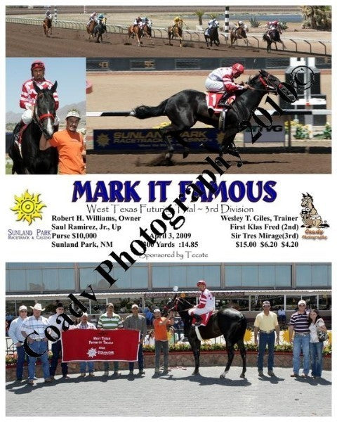 Mark It Famous  -  West Texas Futurity Trial ~ 3rd