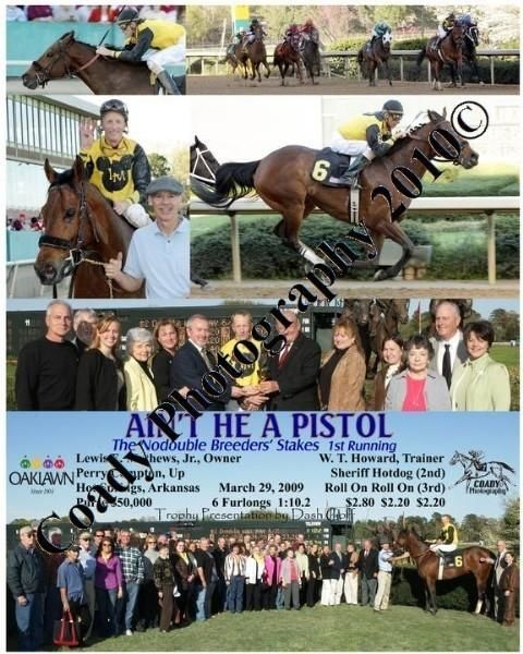 AIN T HE A PISTOL  -  The Nodouble Breeders  Stake