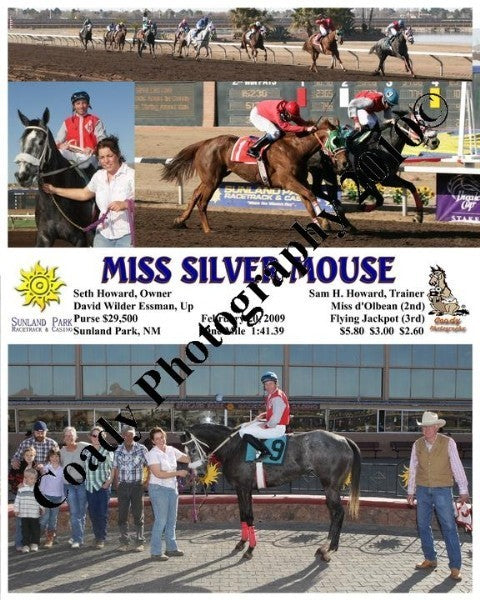 Miss Silver Mouse  -    -  2 20 2009
