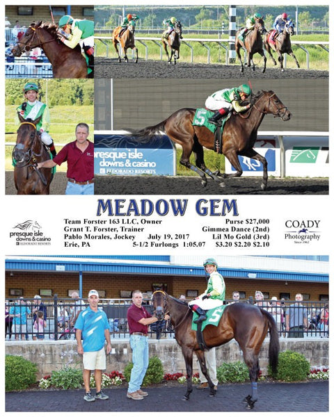 MEADOW GEM - 071917 - Race 04 - PID