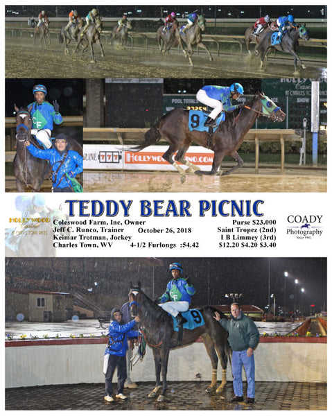 TEDDY BEAR PICNIC - 102618 - Race 04 - CT